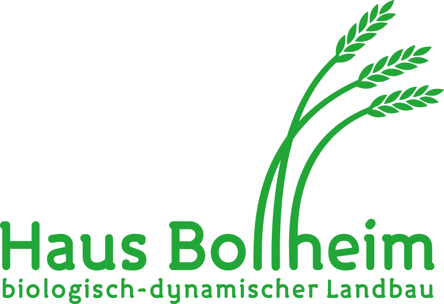 Logo Haus Bollheim